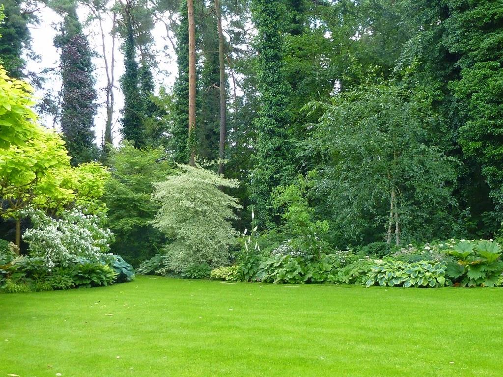 Le jardin des grandes vignes le jardin du sous bois for Jardin belgique