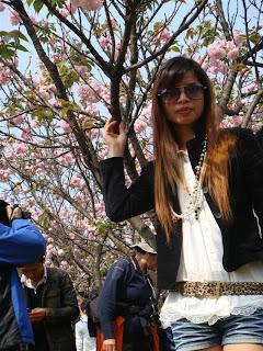 Cherry Blossoms at Nanxi Hill Park, Guilin China