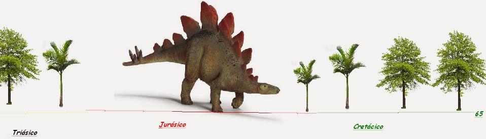 Dinosaurioman a lo que quer as saber de los dinosaurios for Tipos de arboles y caracteristicas