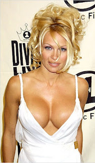 sexy playboy model pamela anderson