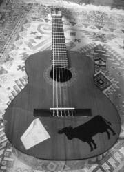 GRUPO MUSICA URBANA