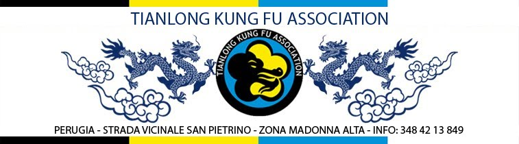 Tianlong Kung Fu Association