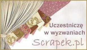 http://2.bp.blogspot.com/-auRPYSuh-3M/UeV87Ab8JDI/AAAAAAAAKTY/gDfI8S5O5kE/s1600/scrapek_uczest_w_wyz.jpg