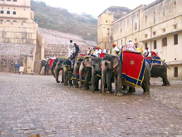 mahouts, elephants, Amber Fort