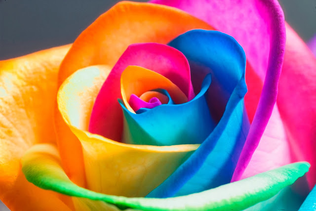http://static.tumblr.com/yxgeqcq/KiCmdpxj1/95696-rainbows-rainbow.jpg