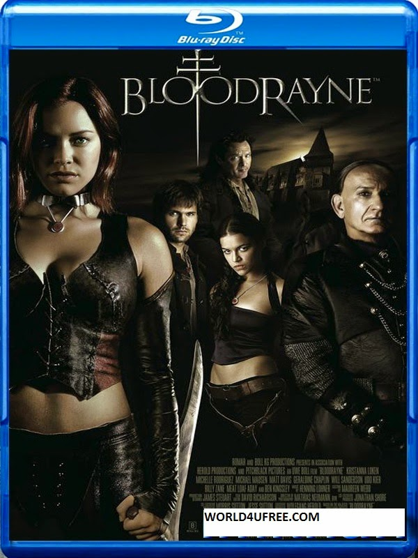 BloodRayne 2005 Hindi Dubbed Dual BRRip 480p 300mb