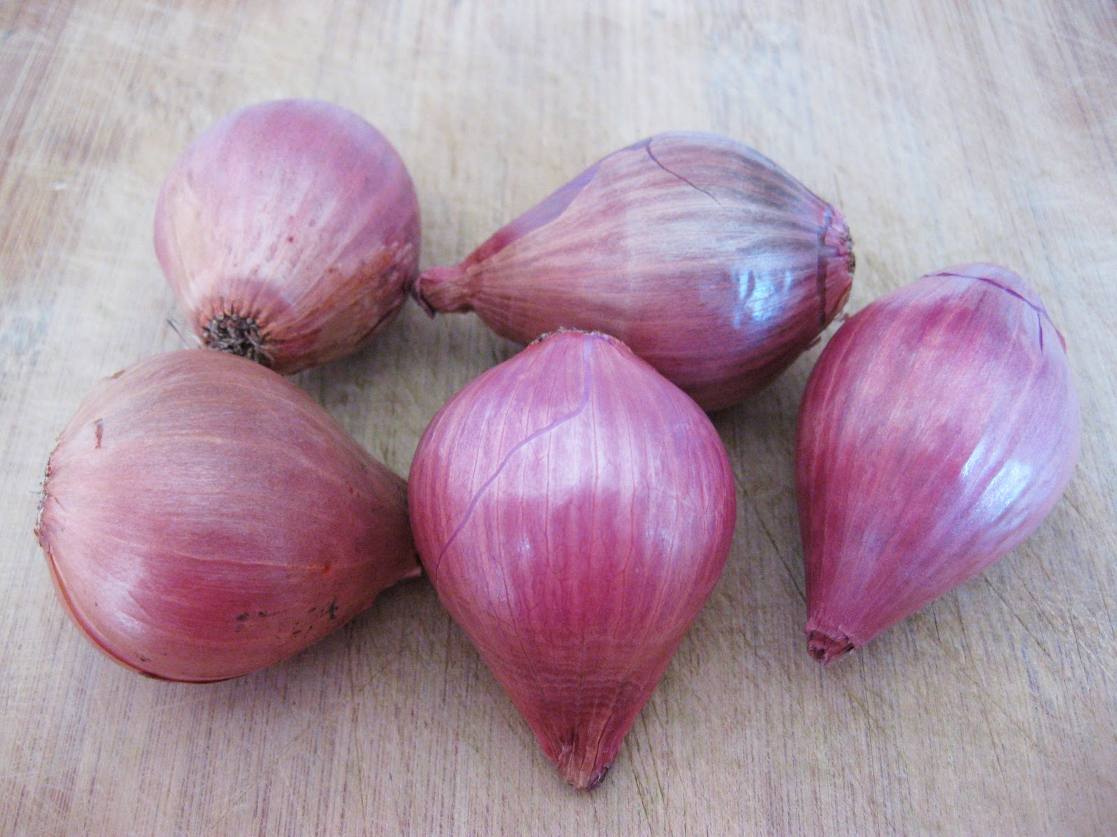 how to tell if shallots are bad
