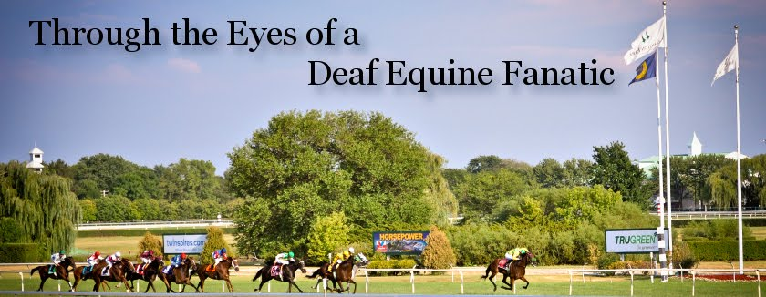 Through the Eyes of a Deaf Equine Fanatic