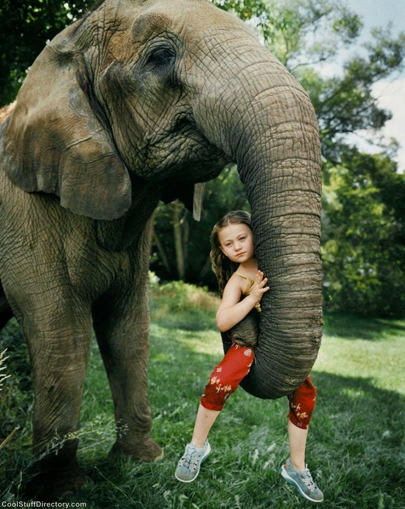 """The Little Girl and Wild Animals in A Photo Project """"Amelia & the Animals"""""""