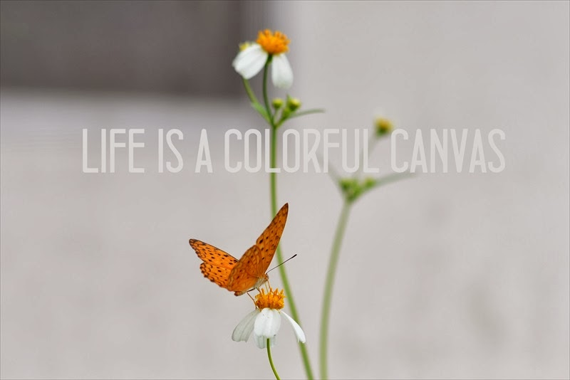 Life is a colorful canvas