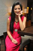 Richa Panai latest glamorous photos-thumbnail-20