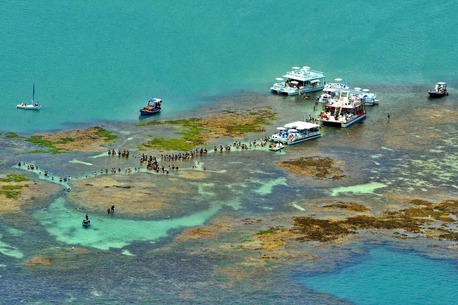 Nordeste brasil piscinas naturais maragogi for Piscinas naturales maragogi