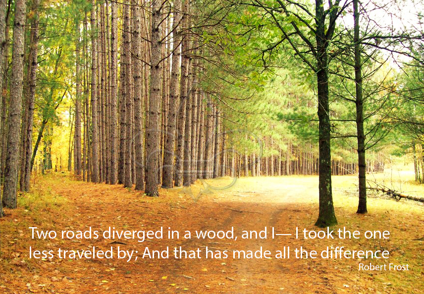 robert frost two roads diverged in a wood k--k.club 2017