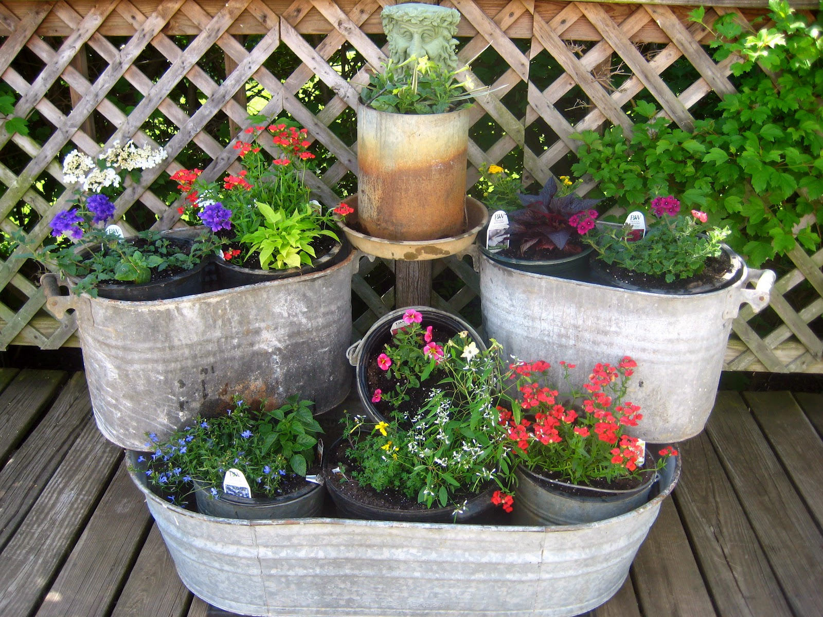 Meadow muffin gardens a canvas of color with container for Planting flowers in pots ideas