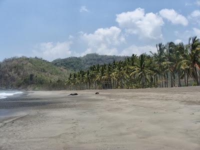 Playa Corozalito, Guanacaste