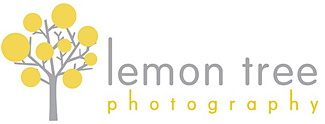 lemon tree photography