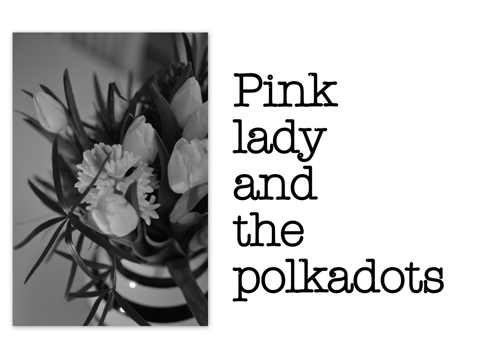Pink lady and the polkadots