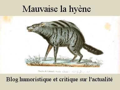 Mauvaise la hyène