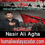 http://www.nohaypk.com/2015/10/nasir-ali-agha-nohay-2016.html
