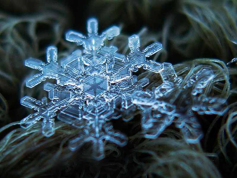 how to take photos of snowflakes with a macro lens