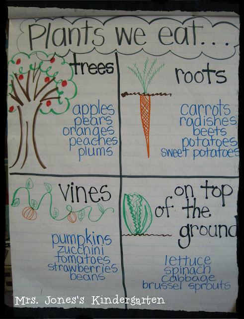 Plants We Eat Chart