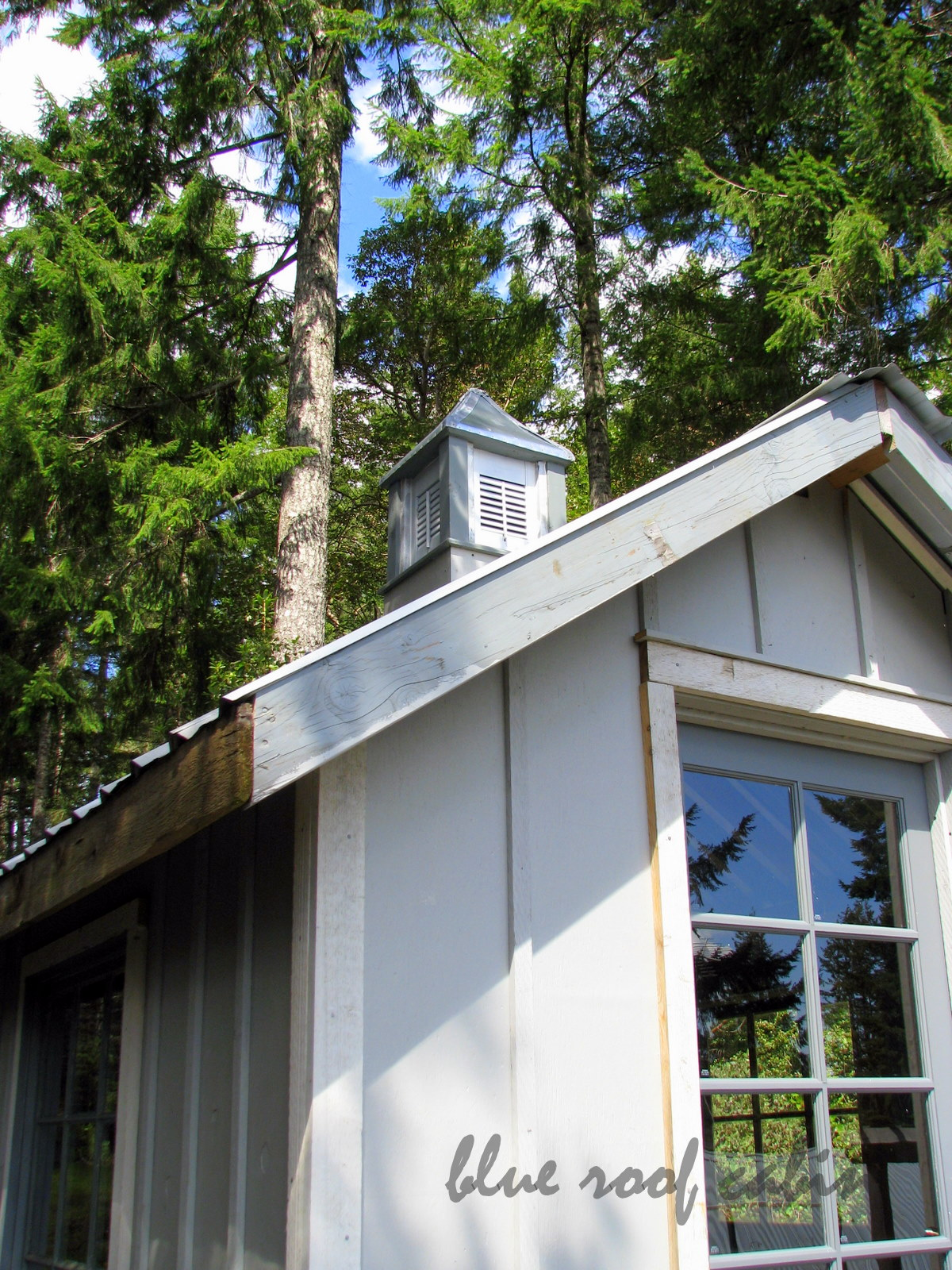 Build shed doors i got shed building for dummies last for Shed roof cabin