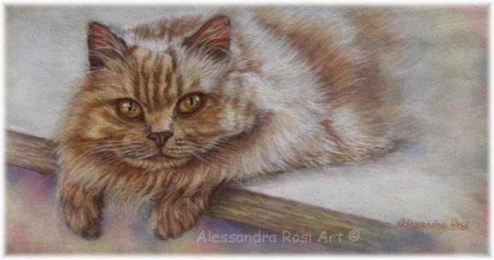 pet portrait - custom portrait painting - portraits from photos - cat art