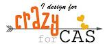 Design Team Crazy for CAS