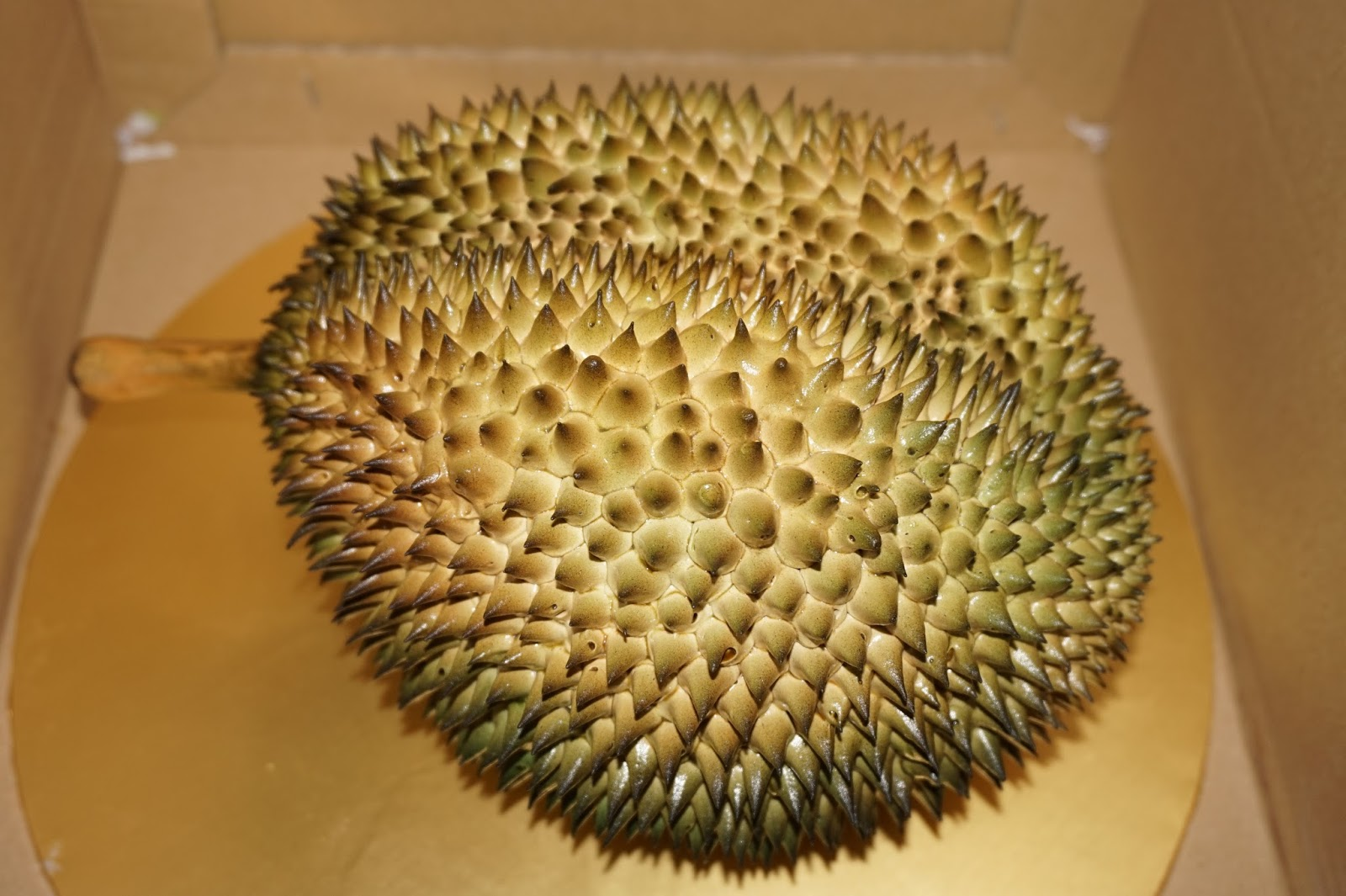 Durian Shaped Cake