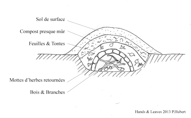 Hands and leaves cinq astuces de permaculture pour une ferme bio plus durable for Culture sur butte permaculture