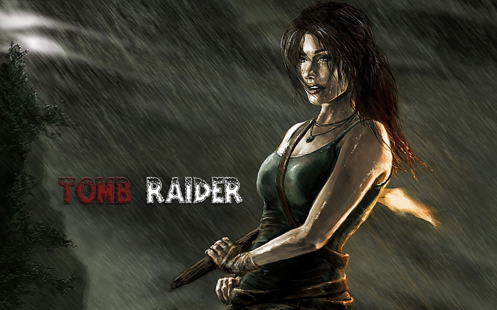 Tomb Raider HD & Widescreen Wallpaper 0.591415761831022