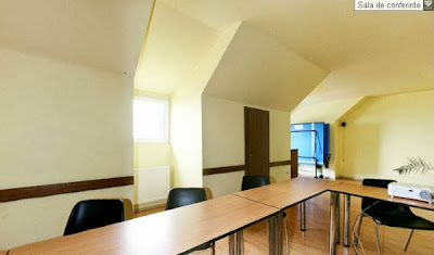 Sala de conferinte la Vila Aplin