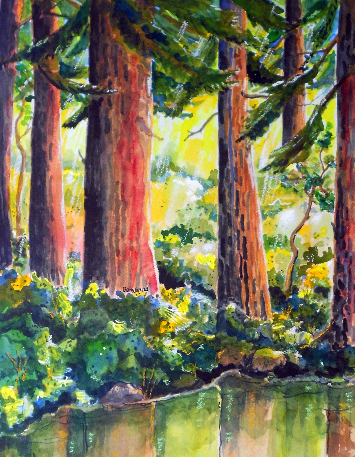 Redwood Painting RedwoodsRedwood Tree Painting