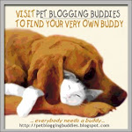 Find Pet Bloggers in Your Area