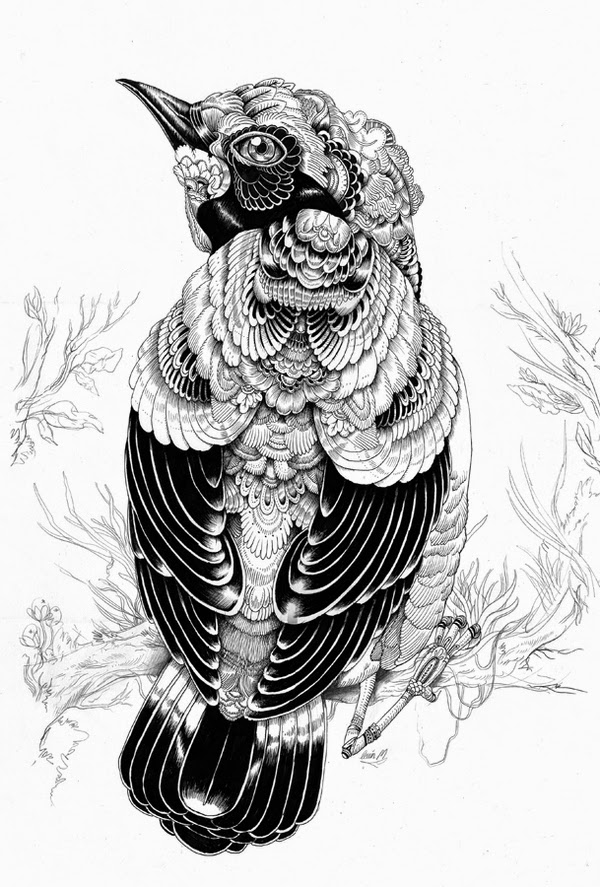 13-Iain-Macarthur-Precision-in-Surreal-Wildlife-Animals-Drawings-www-designstack-co