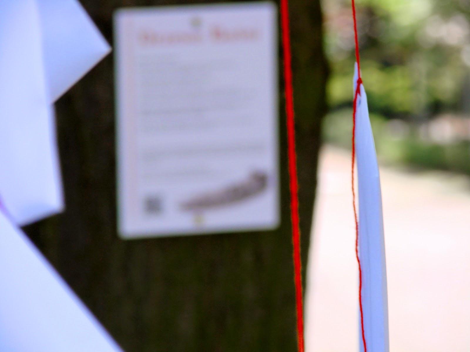 Drzewo Baśni, Arteterpia, Konferencaj Areteterapia chorzów, Baśnie i drzewa, Drzewa w baśniach, Baśnie na Warsztacie, Mateusz Świstak, Fabryka Kreatywności