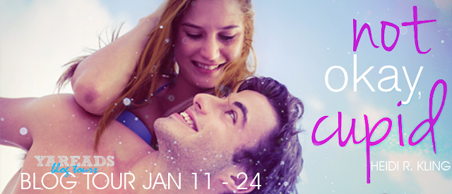 Roxys Reviews Blog Tour Guest Post Excerpt Giveaway Not Okay