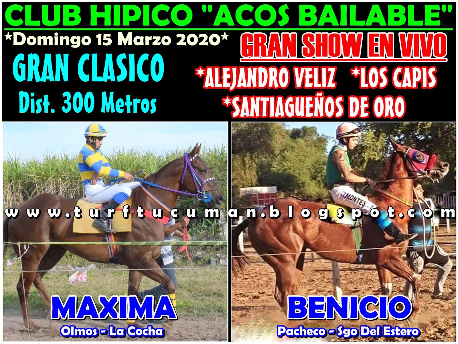 MAXIMA VS BENICIO
