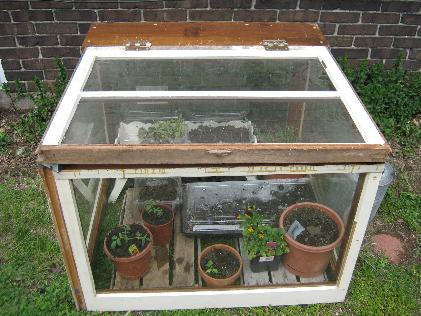 antb pottery mini greenhouse or hot box