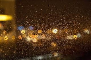 в Амстердаме дождь