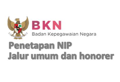 Penetapan NIP Jalur Umum dan Honorer