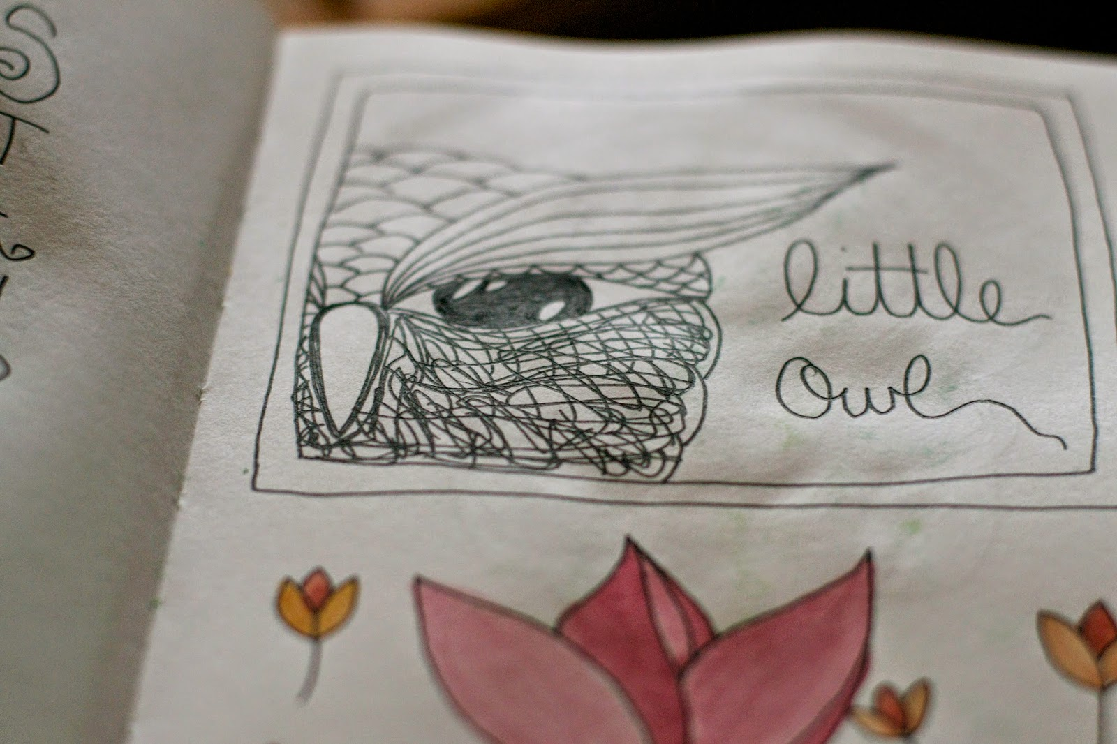 Sketchbook peek: Little owl logo design and doodling flowers.