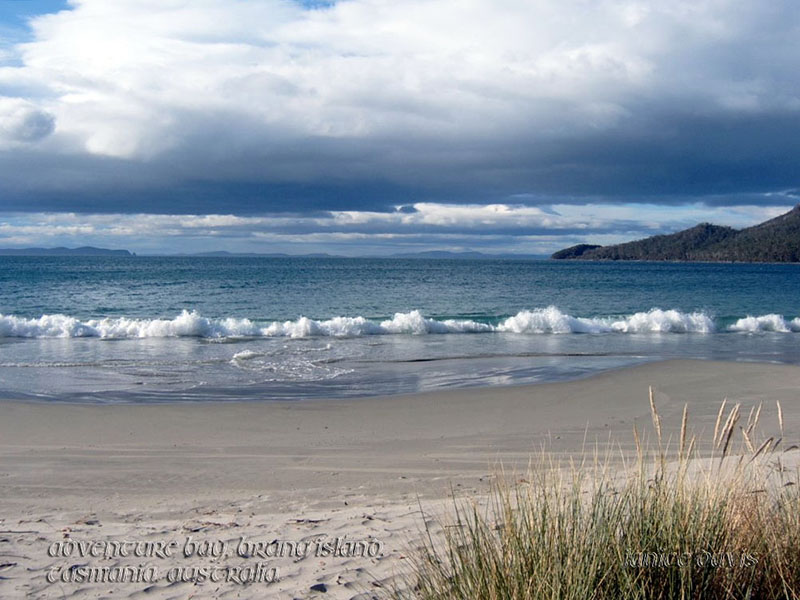 Adventure Bay, Bruny Island. Tasmania