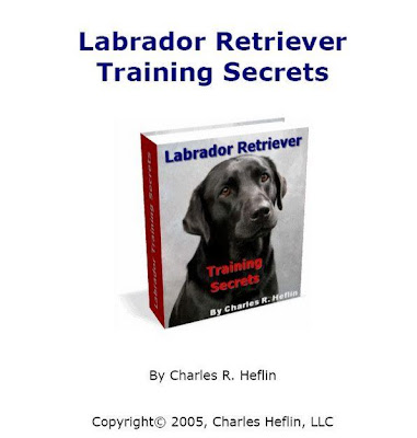 Labrador Retriever Training Secrets