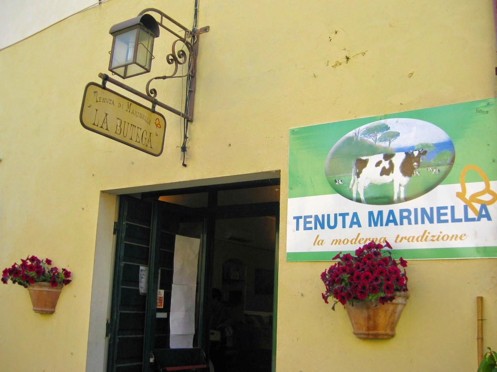La Butega della Tenuta di Marinella. Cheese from Luni.