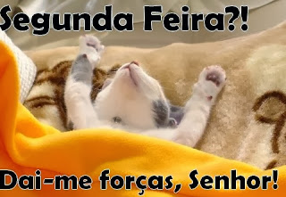 SEGUNDA- FEIRA - LOTECA 609
