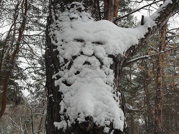 Face Photo via Bits and Pieces (I think)