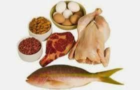regime à base de proteines