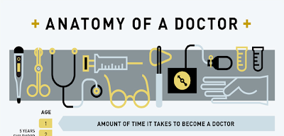 Anatomy of a Doctor [INFOGRAPHIC]