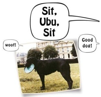 Sit Ubu Sit Good Dog Shows